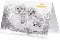 Felicitatiekaarten - Felicitatie Tweeling Uilskuikens