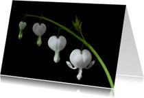 Bloemenkaarten - gebroken hartjes