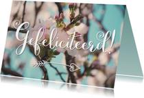 Verjaardagskaarten - Gefeliciteerd - Bloesem