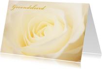 Condoleancekaarten - Gele roos in bloei