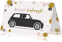 Geslaagd kaarten - Geslaagd rijbewijs vrouw mini