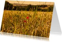 Zomaar kaarten - Graanveld met klaprozen