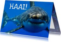 Dierenkaarten - Haai - leuke dierenkaart voor zomaar