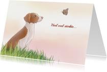 Condoleancekaarten - Huisdieren Sterkte kaart