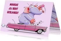 Geslaagd kaarten - Leuke rijbewijs geslaagd kaart - HE
