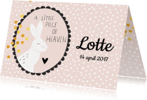 Geboortekaartjes - Lief geboortekaartje 'A little piece of heaven' - Roze
