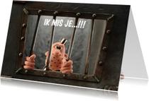 Liefde kaarten - Liefde kaarten met Boef Brom