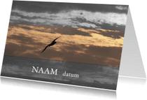 Condoleancekaarten - Meeuw naam datum