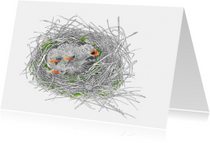 Kunstkaarten - Nest heggenmusjes