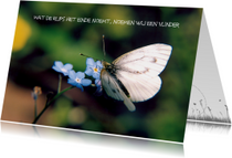 Sterkte kaarten - nieuw begin sterkte vlinder ME