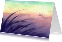 Condoleancekaarten - Nieuwe morgen