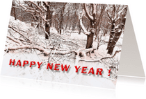 Nieuwjaarskaarten - Nieuwjaarskaart  Fijne Feestdagen