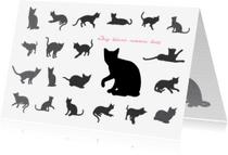 Condoleancekaarten - nr27-afscheid-kat
