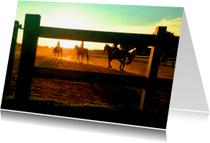Dierenkaarten - Paardrijden in de avondzon