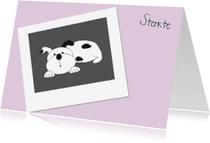Condoleancekaarten - Rouw hond