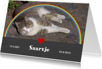 Condoleancekaarten - Rouwkaart met foto - regenboog hart