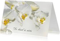 Rouwkaarten - Rouwkaart-Orchideebloemen
