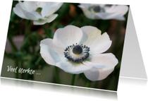 Sterkte kaarten - Sterkte anemonen