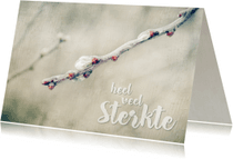 Condoleancekaarten - Sterkte - Bevroren Takje