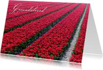 Condoleancekaarten - Tulpenveld