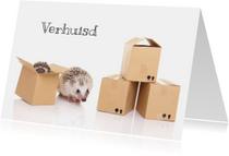 Verhuiskaarten - Verhuiskaart | Egeltjes in verhuisdoosjes