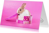Verjaardagskaarten - Verjaardagskaart - Konijn cadeau
