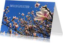 Verjaardagskaarten - Verjaardagskaart Magnoliabloesem