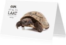 Verjaardagskaarten - Verjaardagskaart te laat schildpad