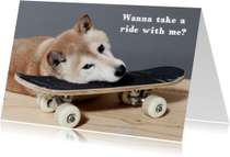 Dierenkaarten - Wanna take a ride with me