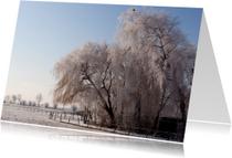 Ansichtkaarten - Winter Wonderland