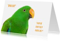 Vriendschap kaarten - Zomaar een kaartje - Papegaai kopje koffie