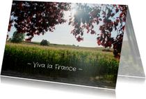 Vakantiekaarten - zonnig Frankrijk