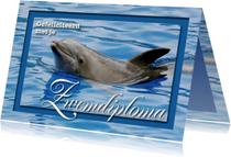 Geslaagd kaarten - Zwemdiploma 1 - Dolfijn - OT