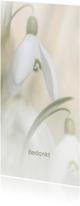 Rouwkaarten - Bedankkaart  met sneeuwklok