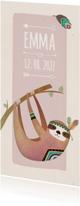 Geboortekaartjes - Geboorte luiaard roze langwerpig - BK