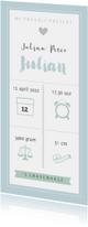 Geboortekaartjes - Geboortekaart langwerpig pictogrammen blauw - BC