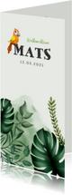 Geboortekaartjes - Geboortekaartje jongen met bladeren, waterverf en vogeltje