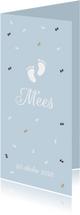 Geboortekaartjes - Geboortekaartje jongens voetjes