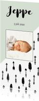 Geboortekaartjes - Geboortekaartje scandinavië, aanpasbare kleur