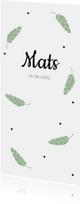 Geboortekaartjes - Groene  veertjes en stipjes
