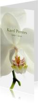 Rouwkaarten - Rouwkaart witte bloemen