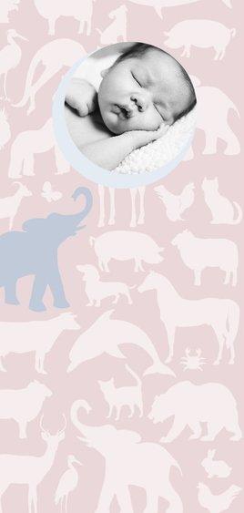 Geboortekaart Animal Sky tikje retro hippe kleuren 2