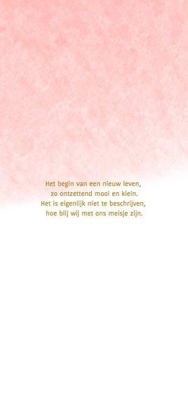 Hallo kaart langwerpig waterverf roze - DH 2