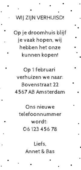 Verhuiskaart langwerpig met Amsterdamse huisjes en reflectie Achterkant
