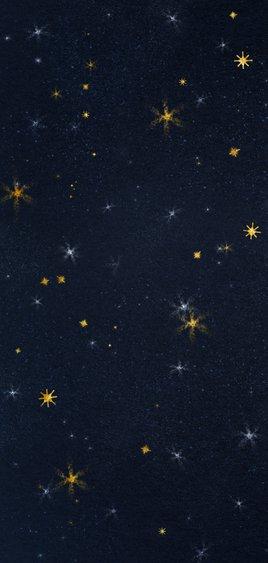 Zakelijke kerstkaart met logo en sterrenhemel 2