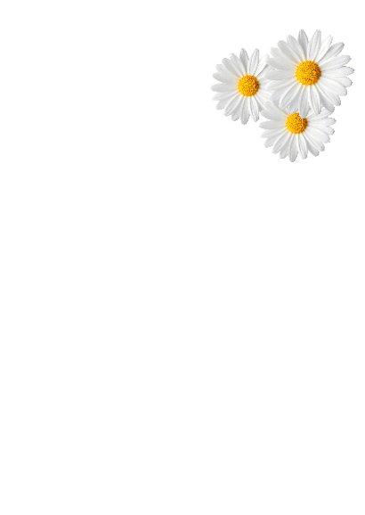 Bloemen uitnodiging meisje 3