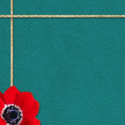 Communie anemoon foto's - DH 2