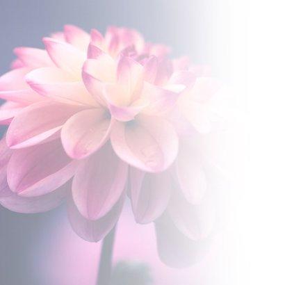Condoleance - bloem met oprechte deelneming 2