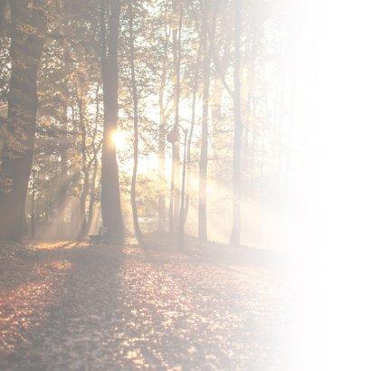 Condoleance - herfst bos met oprechte deelneming 2