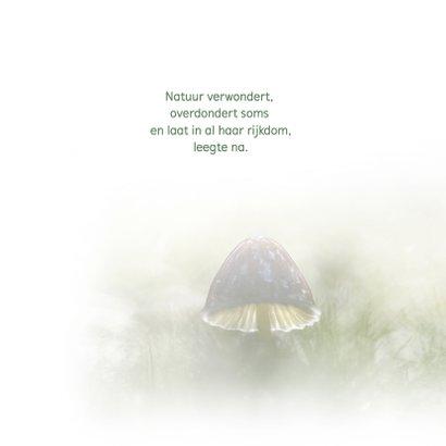 Condoleance paddenstoel/herfst 2